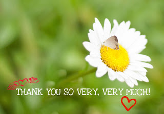 rp_Thank-you-Daisy.jpg
