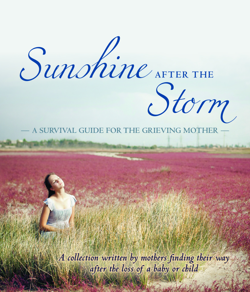 Sunshine_After_the_Storm_-_Cover3