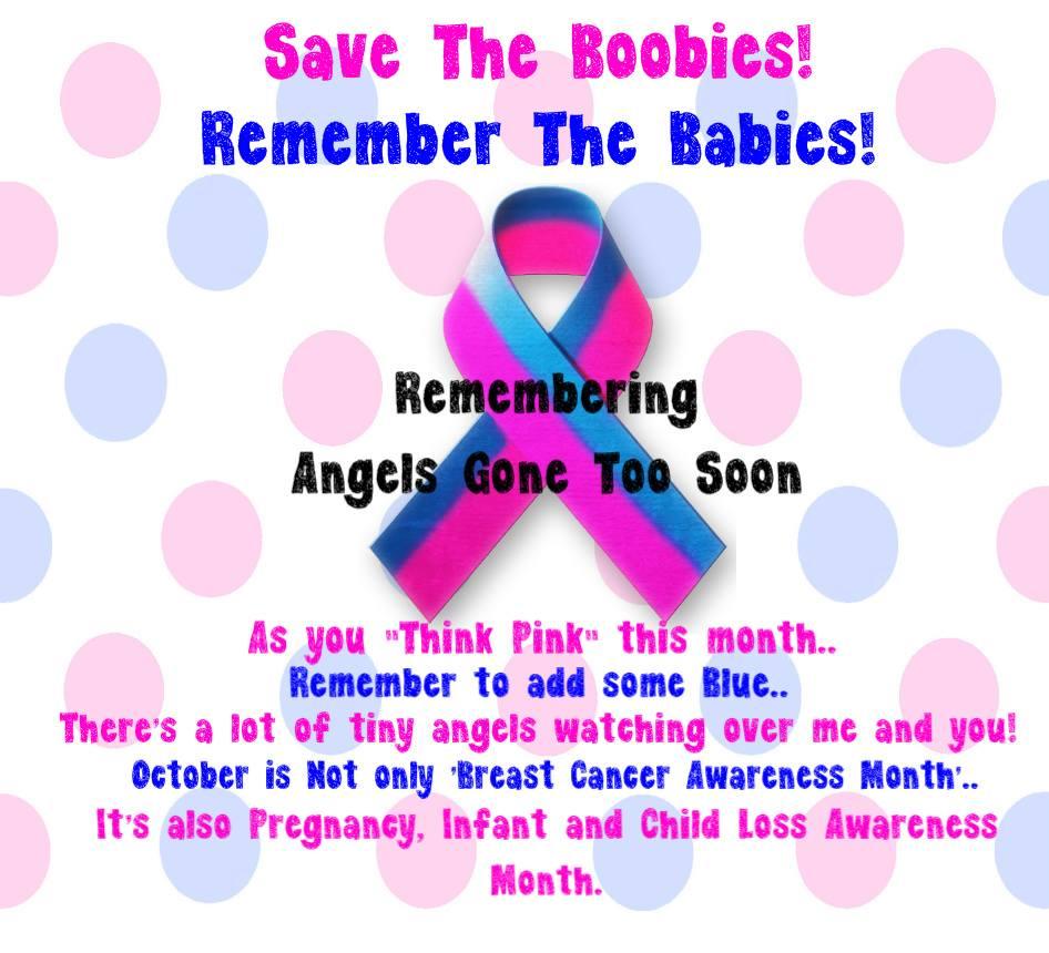 Save boobies and remember babies ... awareness